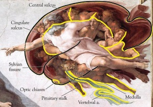 The Abode of God a neurobiologist discovered, embeds a map of ther BRAIN